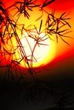 Perfeccione la escena de la captura de la puesta del sol fotografía de archivo libre de regalías
