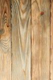 Perfeccione la textura del pino Imagen de archivo libre de regalías