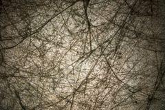 Perfect abstrakt konstruował tło teksturę z naturalnym vign obraz stock