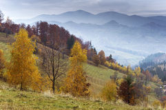 Perfect afternoon in Transylvania Stock Photography