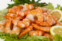 Perfect appetizer of boiled peeled shrimp Royalty Free Stock Photos