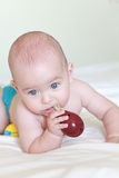 Perfect baby boy biting a toy Royalty Free Stock Images