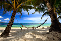 Perfect beach. Perfect tropical beach with palm trees and hammock Stock Photos