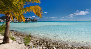 Perfect beach on Bora Bora Royalty Free Stock Photos