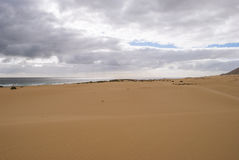 Perfect beach (Fuerteventura) Stock Photo
