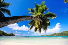 Perfect beach in Seychelles Stock Photography