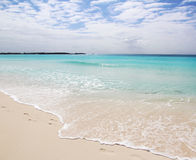 Perfect Beach. The view of a perfect beach in the Bahamas Royalty Free Stock Photo