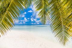Perfect beach view. Summer holiday and vacation design. Inspirational tropical beach, palm trees and white sand. Tranquil scenery stock image