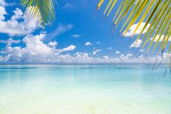 Perfect beach view. Summer holiday and vacation design. Inspirational tropical beach, palm trees and white sand. Tranquil scenery royalty free stock photo