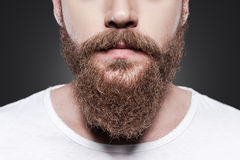 Perfect beard. Stock Images