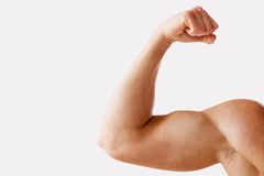Perfect bicep. Close-up of muscular man showing his perfect bicep while standing against grey background Royalty Free Stock Images