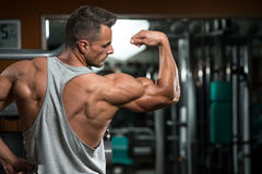 Perfect Biceps Royalty Free Stock Photography