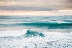 Perfect big breaking Ocean barrel wave and alone surfer royalty free stock photo