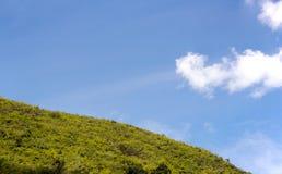 Perfect blue sky. In a rainy season. beautiful nature Royalty Free Stock Photography