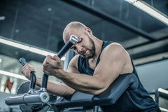With Perfect Body mod?le masculin musculaire beau faisant l'exercice de biceps photos stock