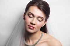Perfect Bride close up make up hair dress Stock Photography