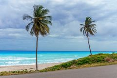 Perfect Caribbean empty beach with azure sea and two high green palm trees. In rainy weather Stock Photography