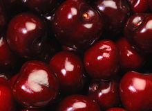 Perfect cherries Royalty Free Stock Photography