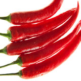 Perfect chilli on white background. Chili peppers isolated on white background Royalty Free Stock Images