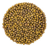 Perfect Circle of Green Peas Stock Image