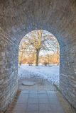 Perfect cobblestone corridor with gateway. Narrow tunnel with arch leading to a tree Stock Images