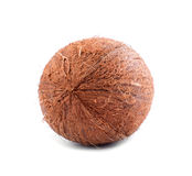 A perfect coco  over the radiant background. A brown coconut with scratchy texture. Tasty healthful nuts for diets. Royalty Free Stock Image