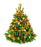 Perfect colorful Christmas tree Royalty Free Stock Photo