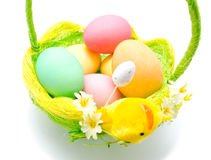Perfect colorful handmade easter eggs in the basket Royalty Free Stock Photo