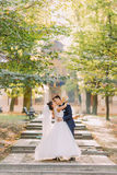 Perfect composition of the kissing newlywed couple at the background of the sunny park. Perfect composition of the kissing newlywed couple at the background of Stock Photo