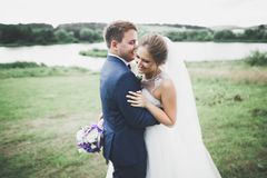 Perfect couple bride, groom posing and kissing in their wedding day Royalty Free Stock Photos
