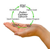 Perfect Customer Lifecycle Royalty Free Stock Photography