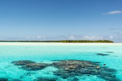 Snorkeling in turquoise clear water with coral reefs,  South Pacific Ocean with Island Stock Photo