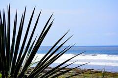Beach Punta Islita Nicoya Guanacaste Costa Rica royalty free stock image