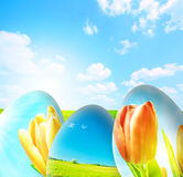 Perfect easter background Stock Images