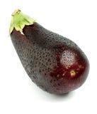 Perfect Eggplant Royalty Free Stock Image