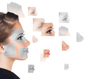 Perfect female face made of different faces Stock Images