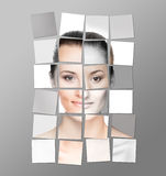 Perfect female face made of different pieces Royalty Free Stock Photography