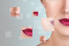 Perfect female face made from parts. Royalty Free Stock Images