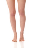 Perfect female legs. Beautiful perfect female bare legs stock image