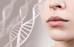 Perfect female lips among DNA chains. Perfect female lips among DNA chains over gray background royalty free stock images