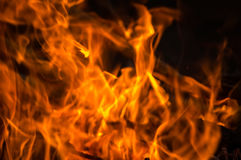 Perfect fire background Stock Images