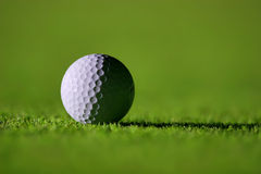 Perfect Golf Ball. On the Green Grass Stock Photo