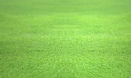 Perfect Golf green lawn turf Stock Photography