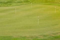Perfect golvend gras op een golfgebied Stock Foto's