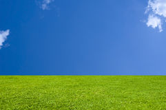 Perfect Grass and Sky Background. Emerald Green Grass with a Cerulean Blue Sky Stock Images