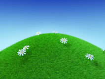 Perfect Grassy Hill Stock Photo