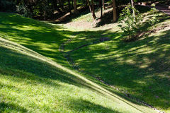 Green grass lawn with shadows. Royalty Free Stock Images