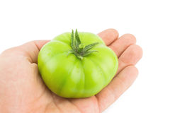 Perfect green tomato Stock Image