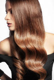 Perfect hair. Portrait of young beautiful woman with long glossy hair Stock Images