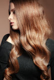 Perfect hair. Portrait of young beautiful woman with long glossy hair Stock Photography